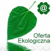 Oferta ekologiczna - Nasze serwery znajdują się w serwerowni przyjaznej środowisku, wykorzystującej energię z elektrowni wodnych